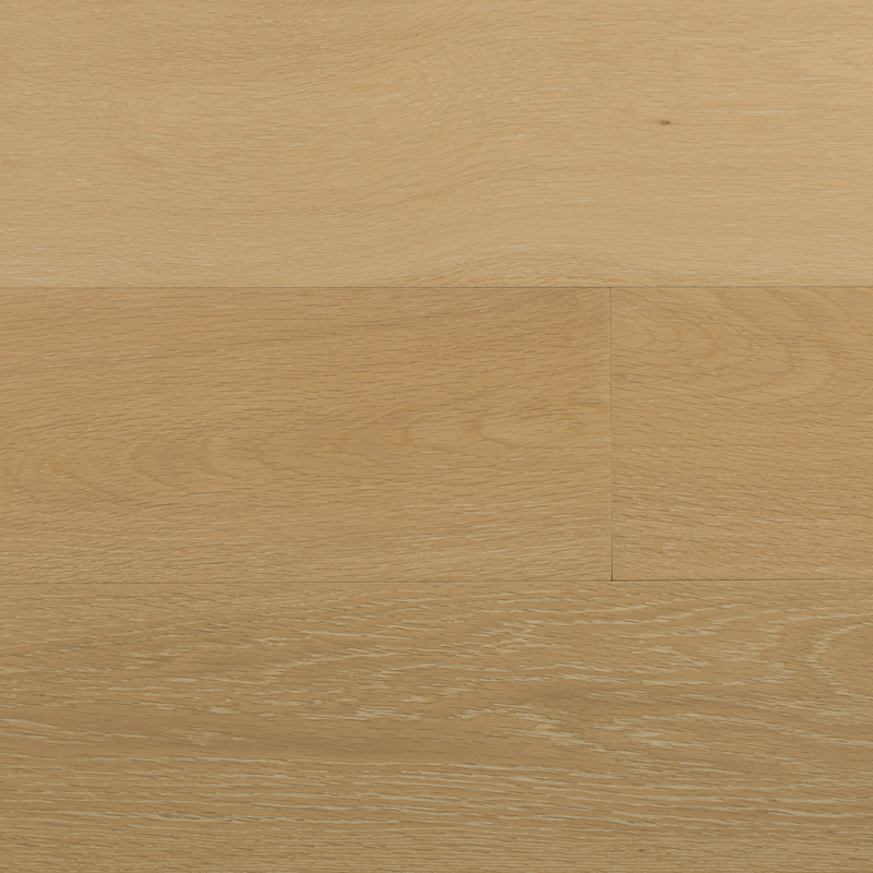 1867-pavia-trapani-chene-blanc-5547000