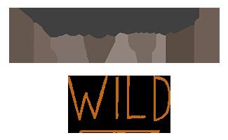 Wall concept elevation wild bois grange