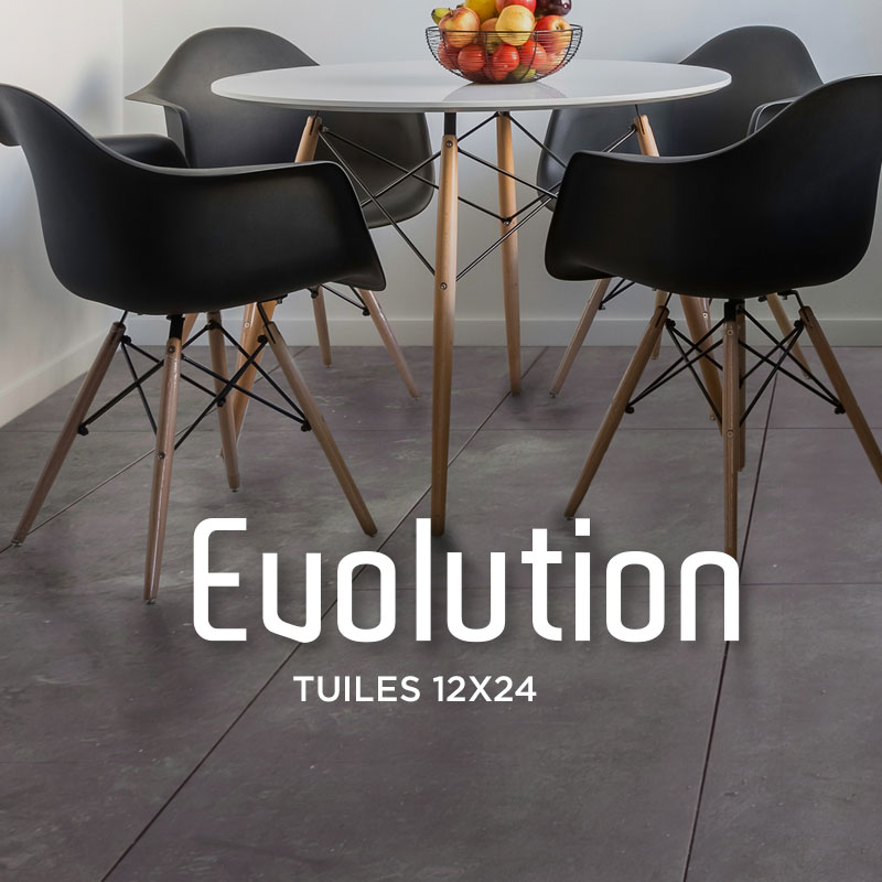 Evolution-categorie-tuile-12x24
